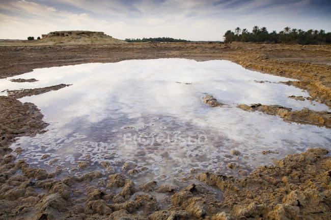 Salt Water Sitting In Dry Desert Field — Stock Photo