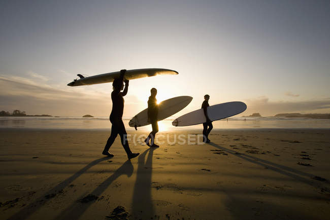 Silhouette Of Three Surfers Carrying Surfboards — Stock Photo