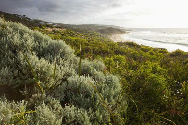 Strand und Klippen an der Küste — Stockfoto