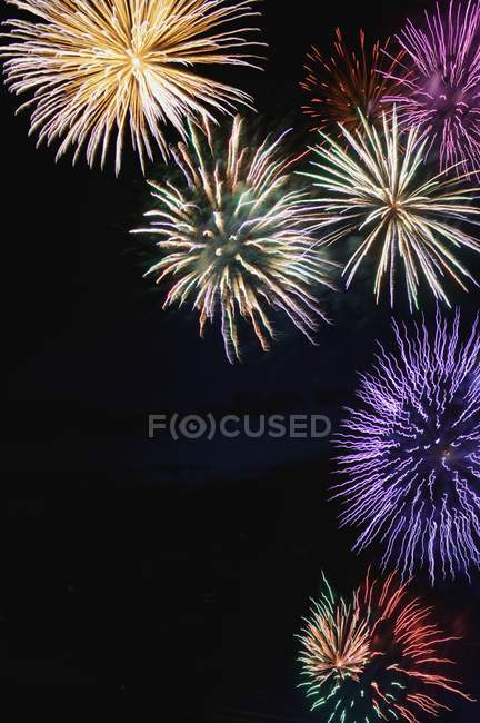 Fireworks display in night sky — Stock Photo