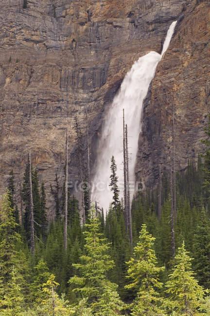 Вид Takakkaw водопад — стоковое фото