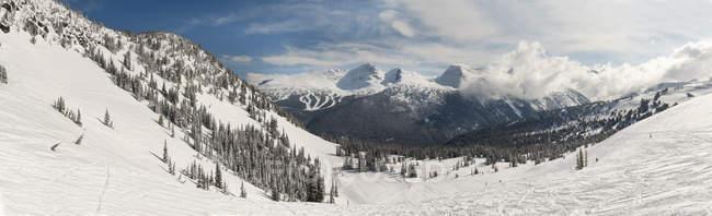 Ski Tracks In Snow — Stock Photo