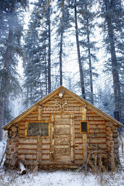 Hunting Cabin in forest — Stock Photo