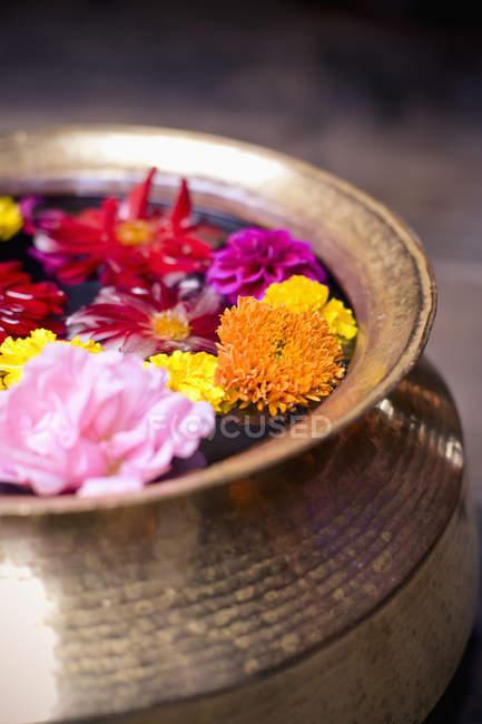 Flores flutuando em uma tigela — Fotografia de Stock