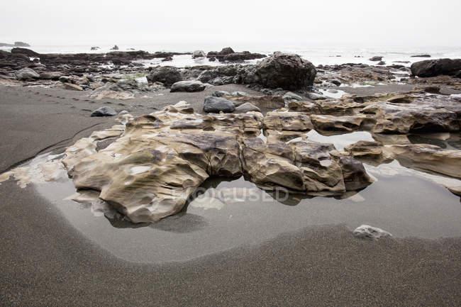 Приливные бассейны в тумане на пляже Сомбрио — стоковое фото