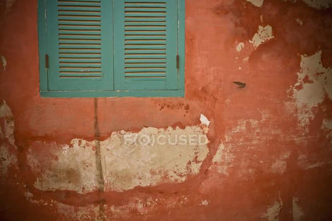 Grüne Rollläden an der Wand — Stockfoto