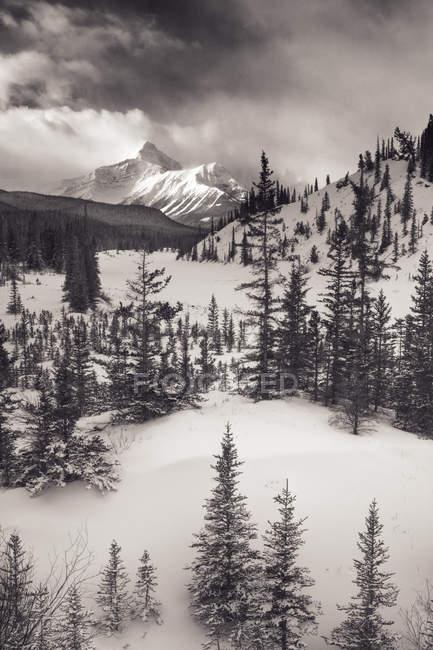 Маунт-Сарбах и Северный Саскачеван — стоковое фото