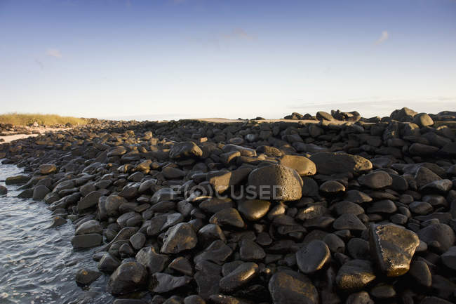 Wet Rocks On The Coast — Stock Photo