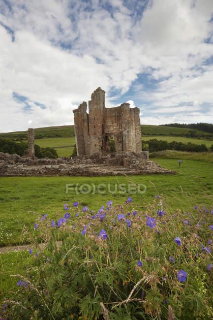 Замок Эдлингем на траве — стоковое фото