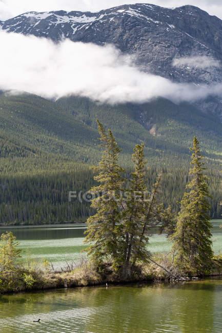 Озеро и Роки-гора — стоковое фото