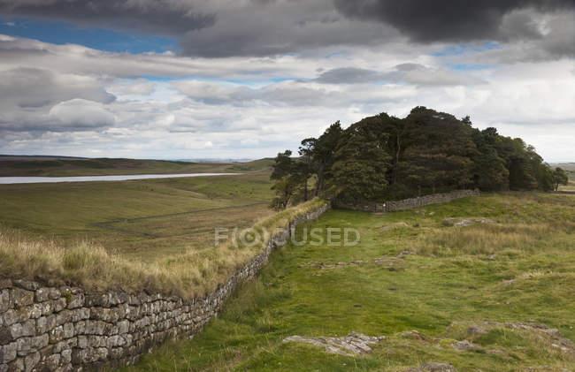 Стена Адриана; Нортумберленд — стоковое фото