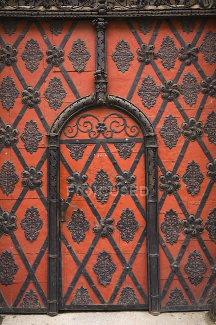 Entrance Door Details — Stock Photo