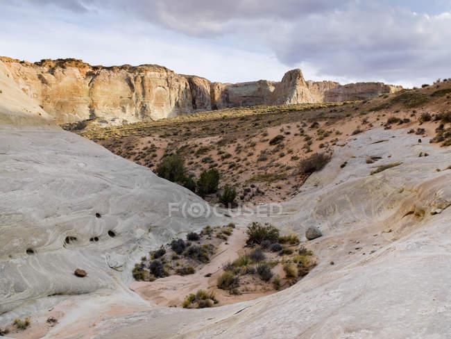Скелі і пустельний пейзаж — стокове фото