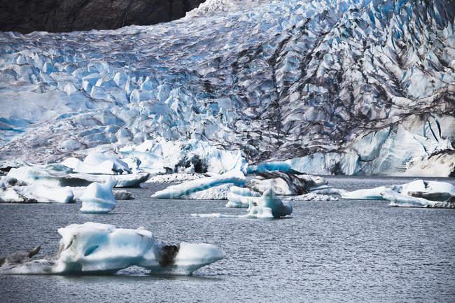 Ледник Mendenhall впадает в море — стоковое фото
