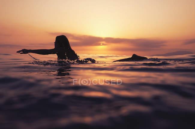 Frau Handauflegen Surfbrett und Sonnenuntergang — Stockfoto