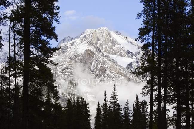 Каскад гор в национальном парке Банф — стоковое фото