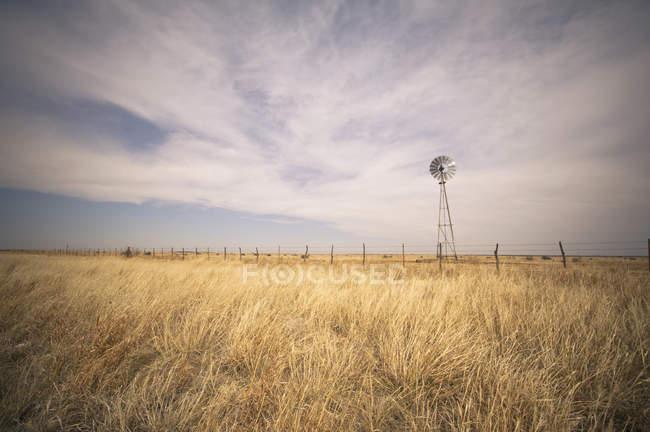 Éolienne sur le terrain — Photo de stock