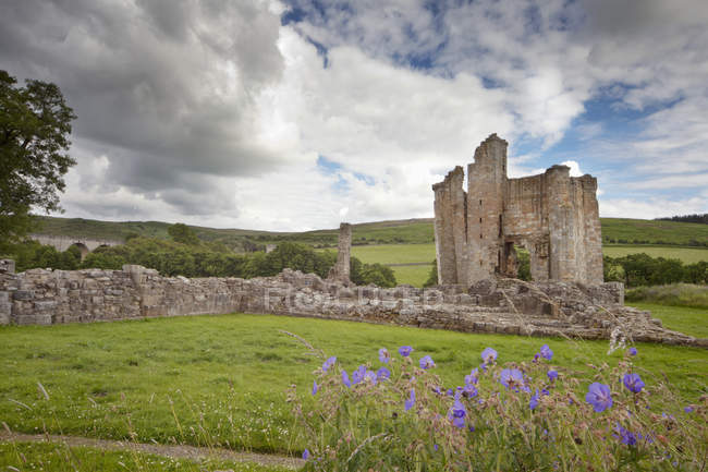 Castelo de Edlingham na Inglaterra — Fotografia de Stock