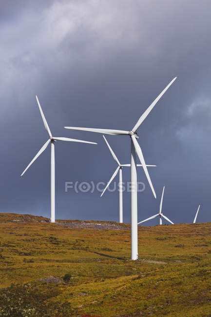 Windmills Producing Alternative Energy — Stock Photo