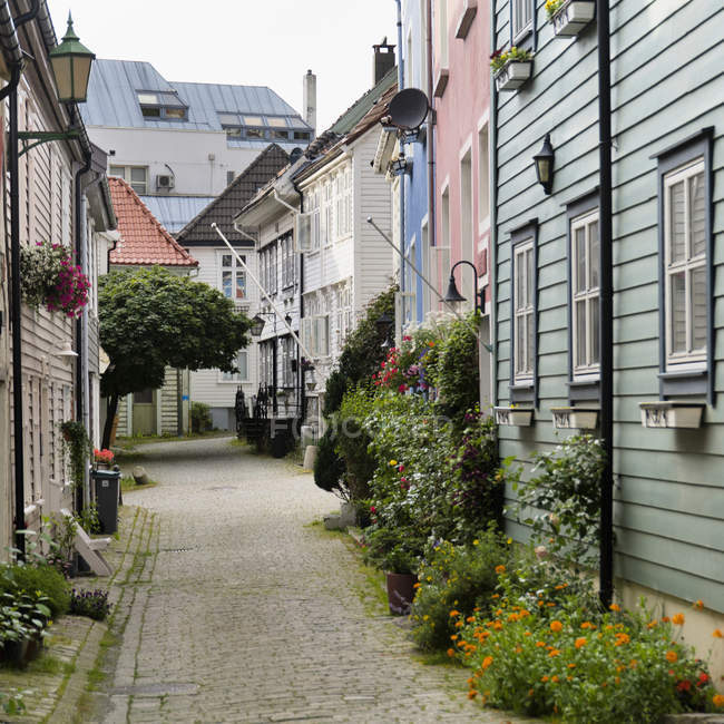 Path Leading Between Rows Of Houses — Stock Photo