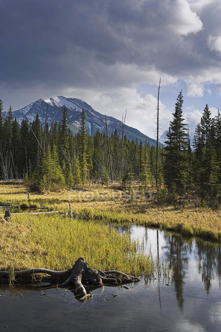 Lagoa do castor e monte Baldy — Fotografia de Stock