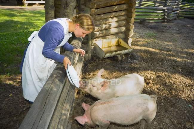 Cerdos de alimentación mujer - foto de stock