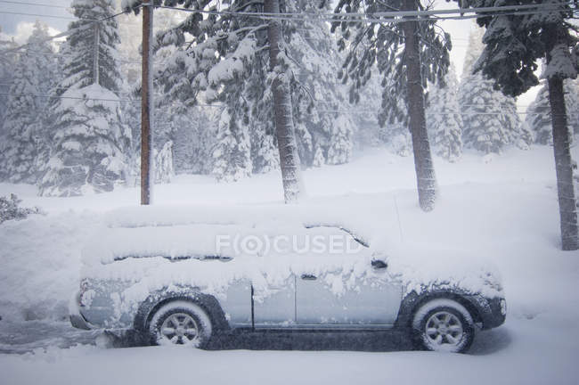 Small Truck Covered In Snow — Stock Photo