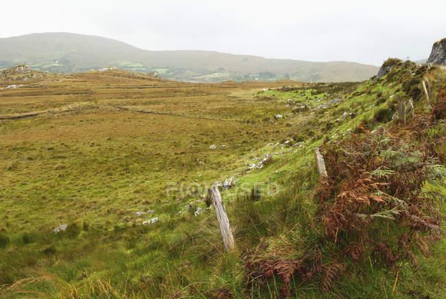 Holzzaunpfähle entlang von Feldern mit Nebel — Stockfoto