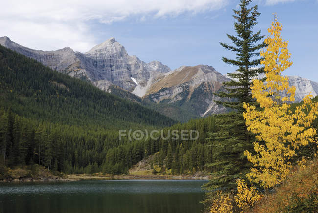 Autumn Colours In Front Of Mount Black Prince — Stock Photo