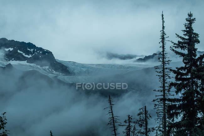 Unbenannter Gletscher fließt aus — Stockfoto