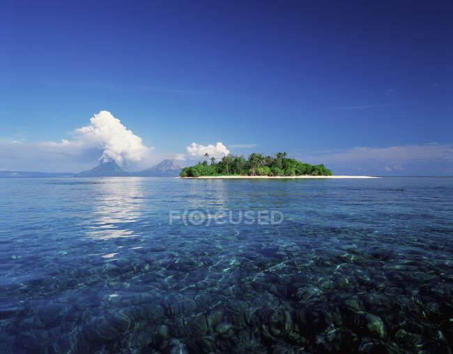 Small island with green plants — Stock Photo