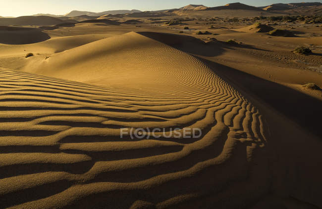 Dunes de sable rouge — Photo de stock