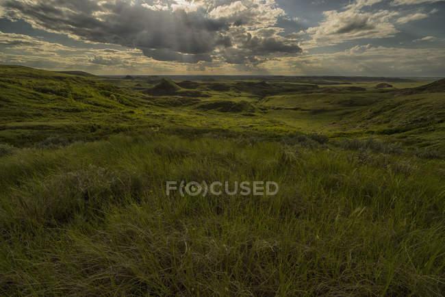 Grasslands National Park — Stock Photo