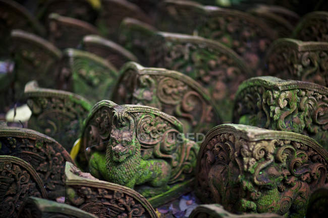 Temple lions in row; — Stock Photo