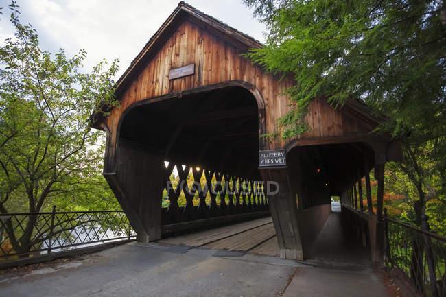 Middle Bridge among trees — Stock Photo
