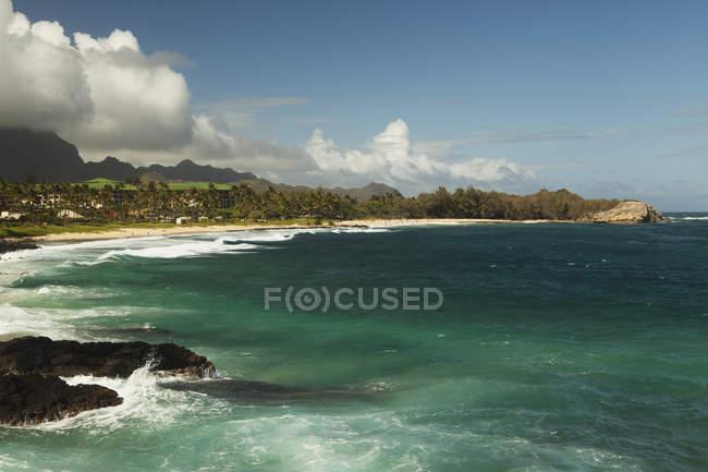 Песчаный пляж с деревьями — стоковое фото