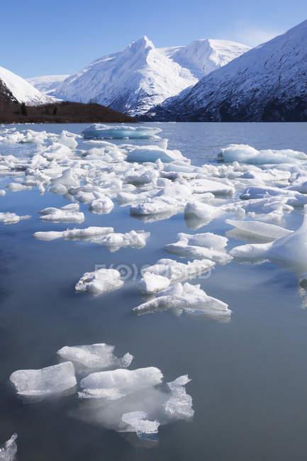 Eisbrocken dot Portage Lake — Stockfoto