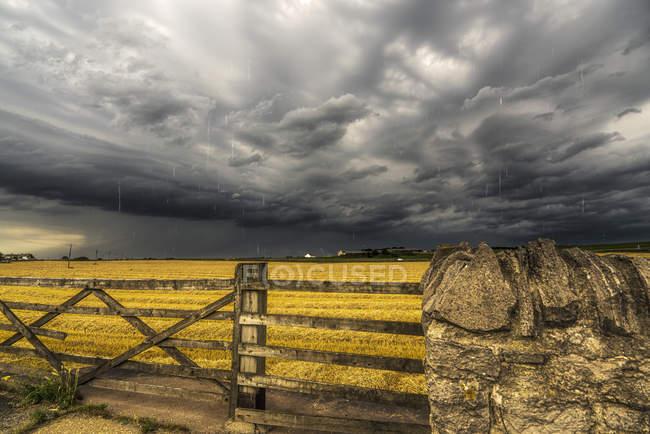 Campo de fazenda com cerca de madeira — Fotografia de Stock