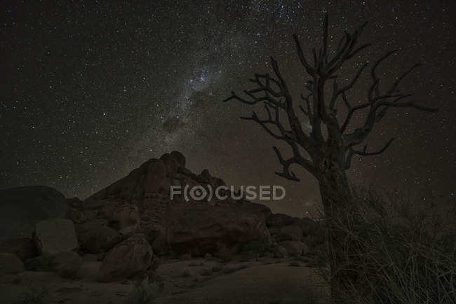 Via Láctea brilha no céu noturno — Fotografia de Stock