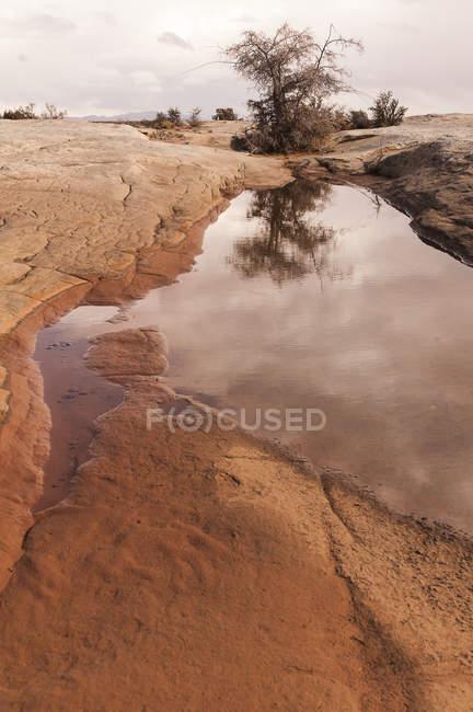 Високі пустелі Mesa — стокове фото