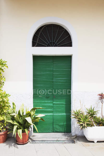 Quaint green door — Stock Photo
