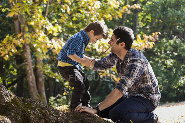 Padre e hijo jugando en un gran roble en un bosque lluvioso - foto de stock