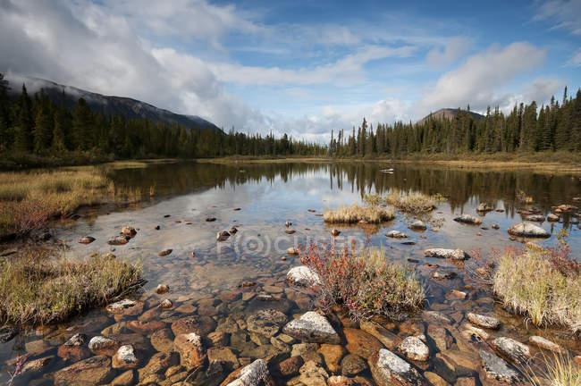 Étang tranquille avec montagne — Photo de stock