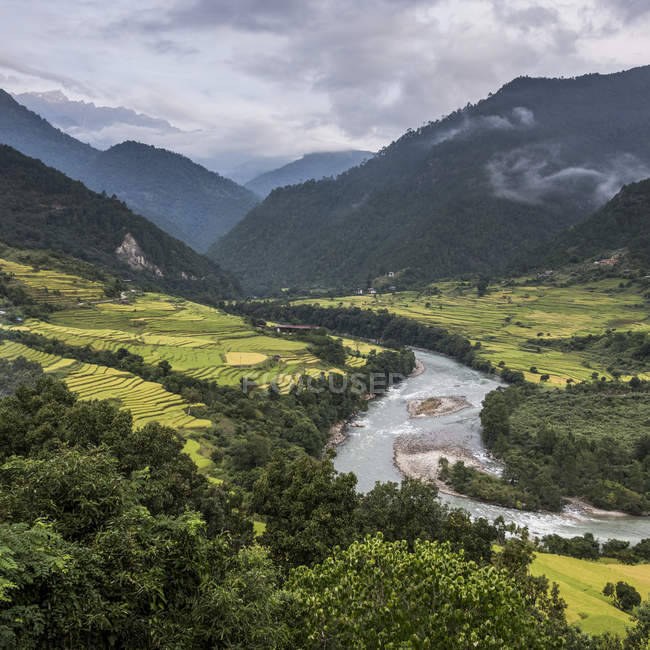 River flowing through valley — Stock Photo