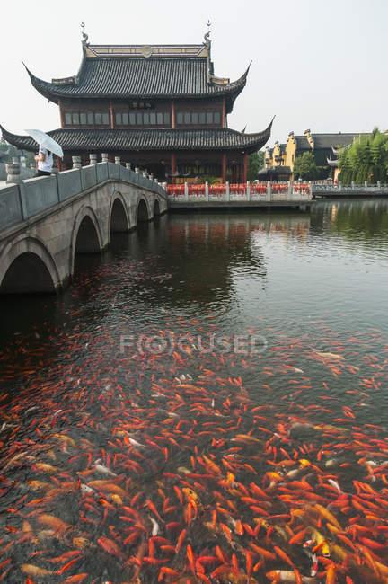 Стародавнього міста Zhouzhuang — стокове фото
