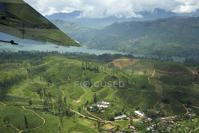 Hills, tea plantations and lake — Stock Photo