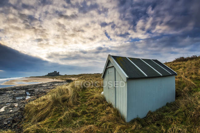Small green shed — Stock Photo