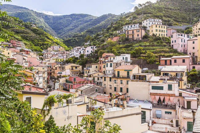 Homes in the village of Manarola — Stock Photo