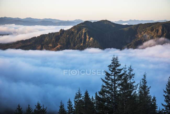 Hamlet, Oregon, Vereinigte Staaten von Amerika — Stockfoto