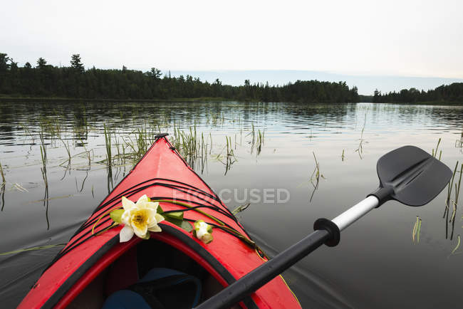 kayak with fresh flowers placed on the bow stock photo 167581326